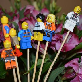 Flori si Lego