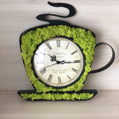 Cana cu ceas si licheni - Kalia Flowers Pitesti