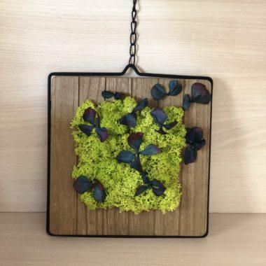 tablou cu licheni si hortensie