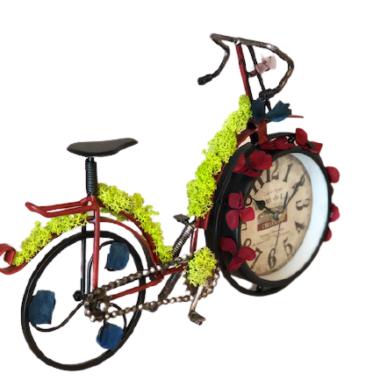 bicicleta cu licheni2