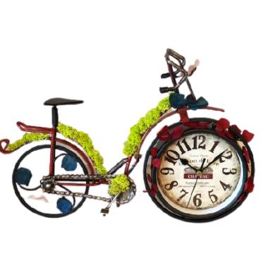bicicleta cu licheni 1