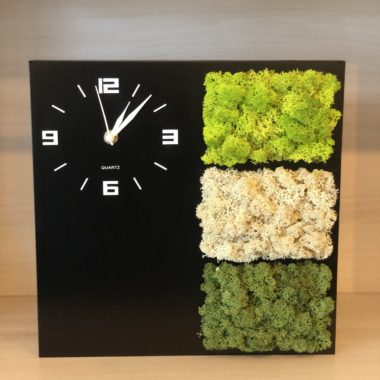 tablou ceas cu licheni