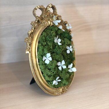 rama aurie cu licheni 2