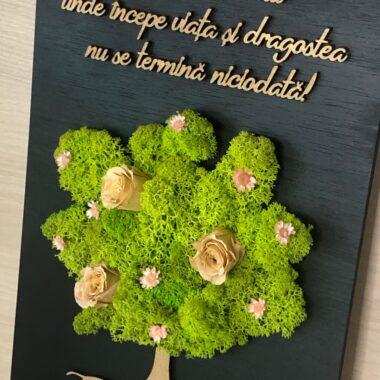 tablou licheni kalia flowers 2